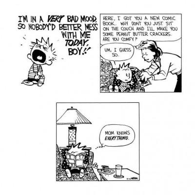 Image For Post Calvin & Hobbes