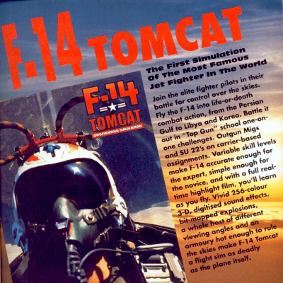 Image For Post F-14 Tomcat - Video Game From The Early 90's