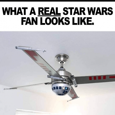 Image For Post Real fan